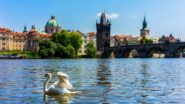 Czech Heatwave Rolls On: 30 Degrees Forecast This Week