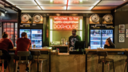 DogHouse Hotel: The First Hotel-Brewery in the World for Beer Lovers