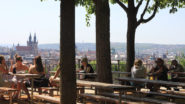 Czech Beer Gardens to Resume on 25 May